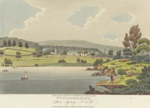 Wooloomooloo by Joseph Lycett, courtesy of the National Library of Australia